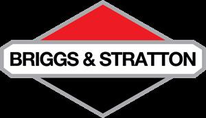 Briggs Stratton
